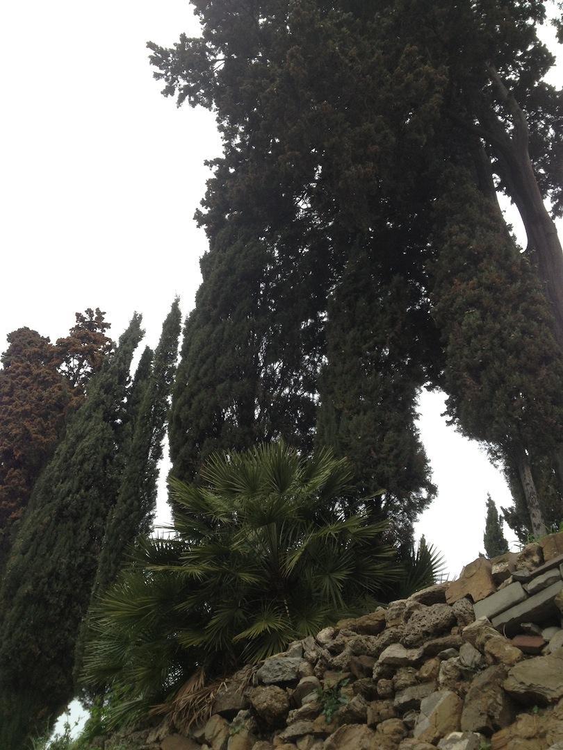 English-Cemetery-Florence-Cimitero-Inglese-Firenze-jessewaugh.com-76.jpg