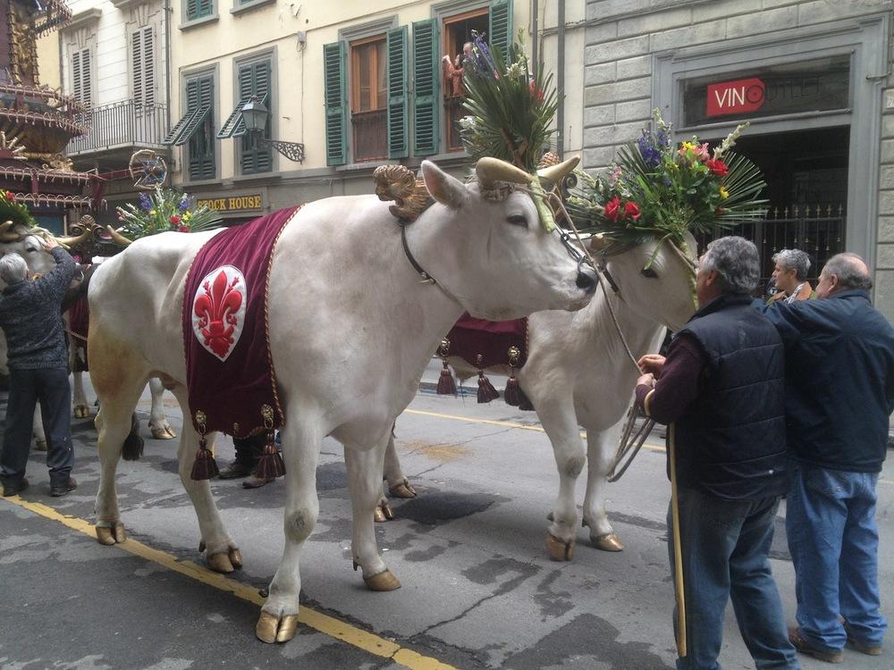 Florence-Easter-Parade-Juggernaut-Bulls-Dove-jessewaugh.com-9.jpg