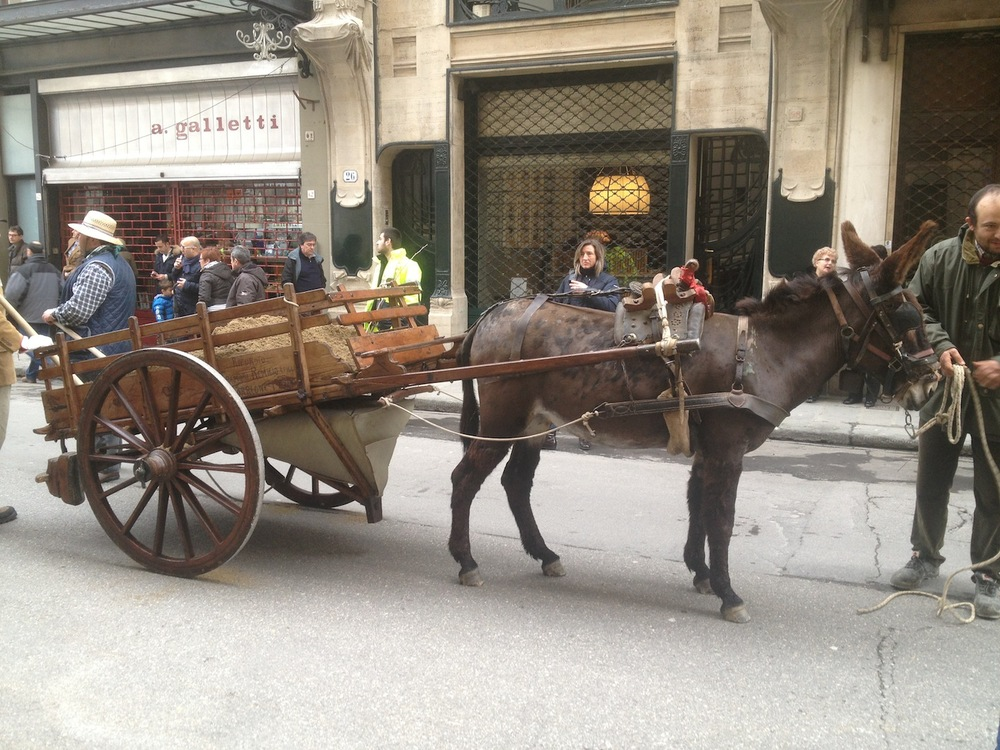 Florence-Easter-Parade-Juggernaut-Bulls-Dove-jessewaugh.com-23.jpg