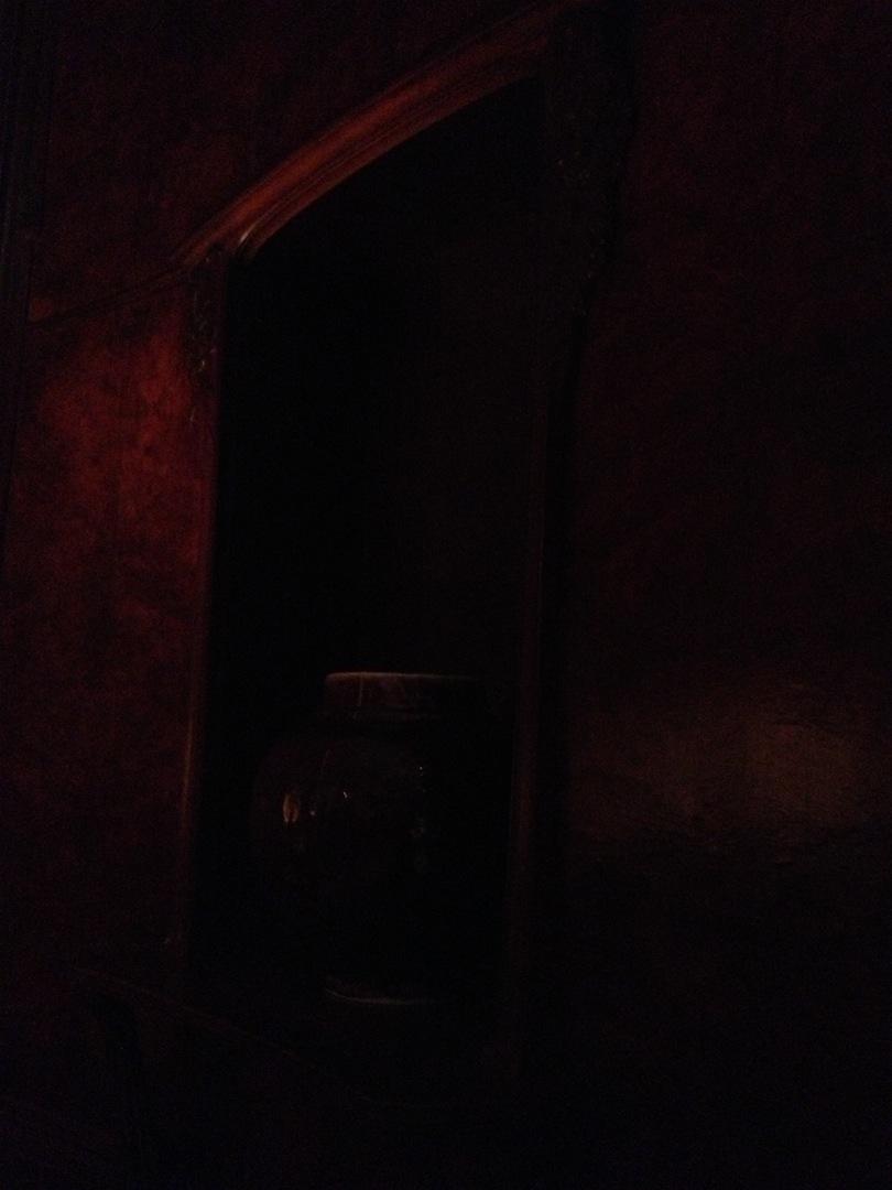 Wisteria-Room-Metropolitan-Museum-Art-Nouveau-jessewaugh.com-17.jpg