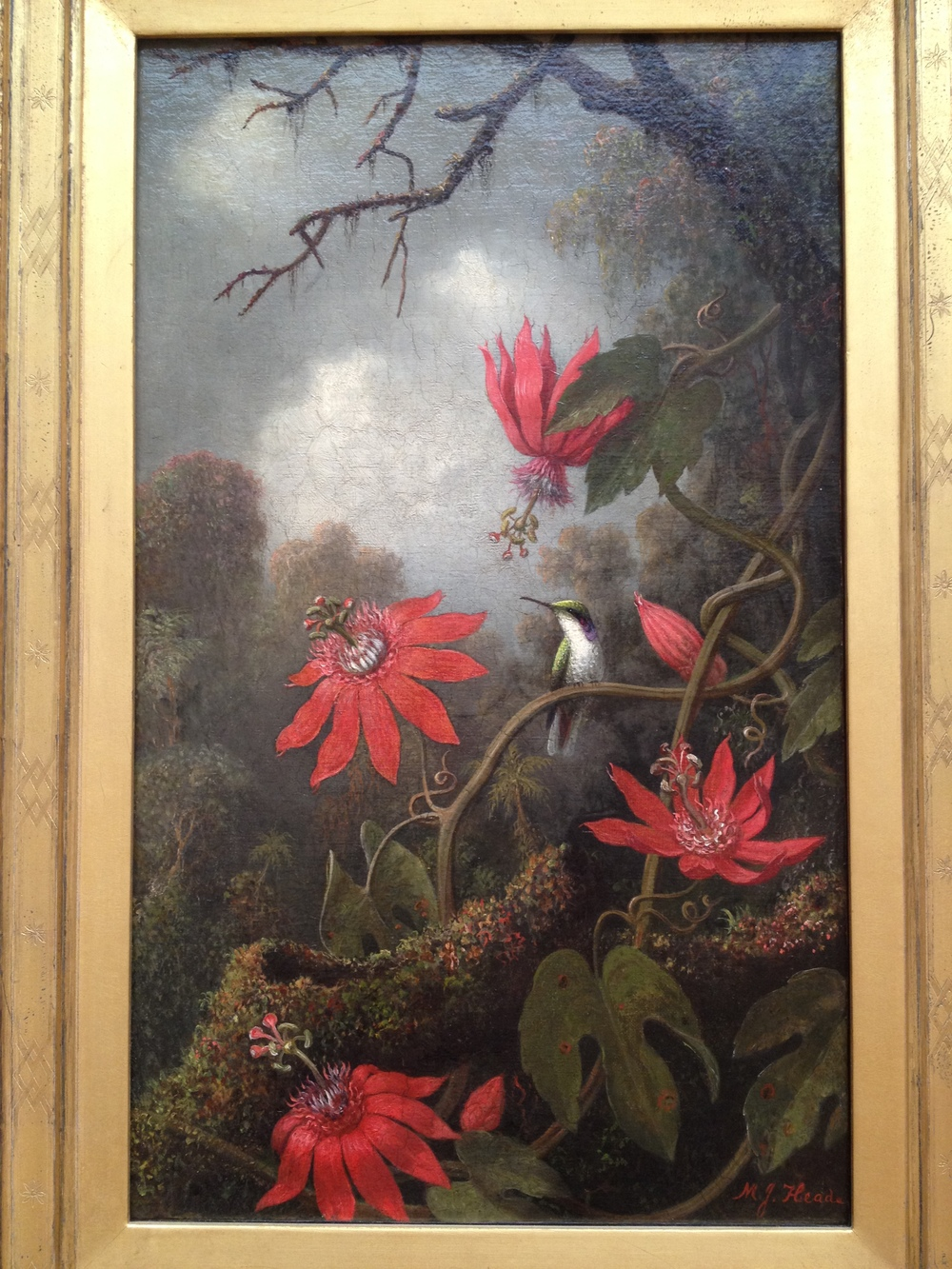 Hummingbirds and Passionflowers Martin Johnson Heade c 1875-85 Oil on canvas
