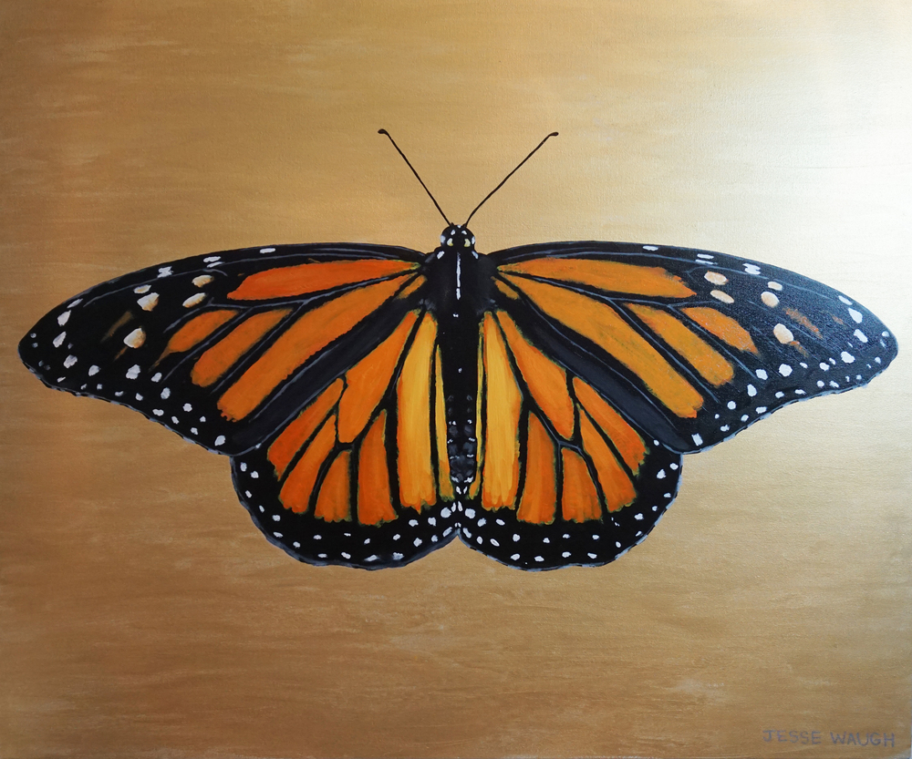 Jesse Waugh   Monarch  Danaus plexippus  Butterfly 3 2014 Oil on canvas