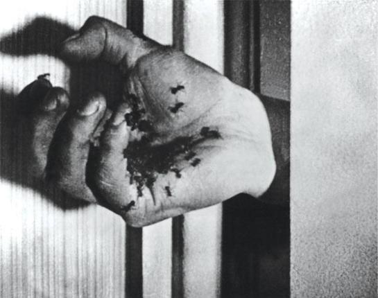 Still from Luis Buñuel's Un Chien Andalou