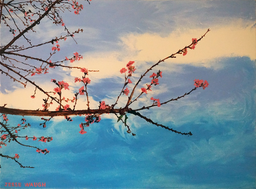 JESSE WAUGH   SAKURA CHERRY BLOSSOMS ICHI   2016 OIL ON CANVAS
