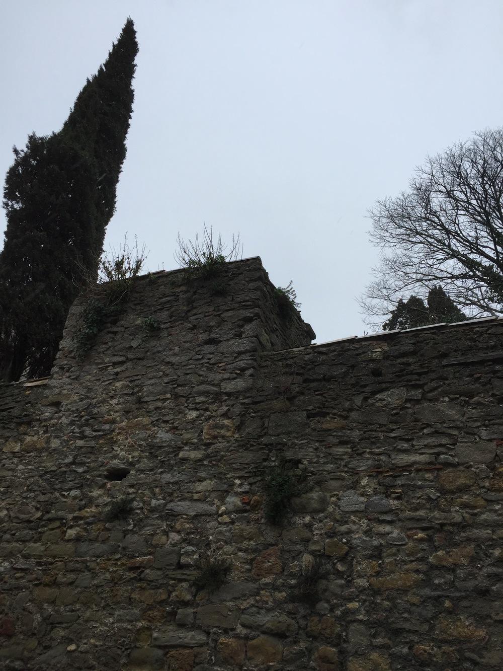 Le-Jardin-du-Calvaire-Carcassonne-jessewaugh.com-57.jpg
