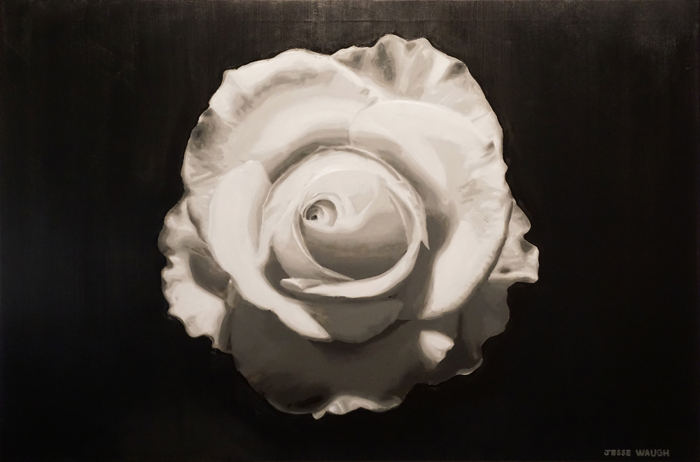 JESSE WAUGH   WHITE ROSE   2016 OIL ON CANVAS 146 X 97 CM
