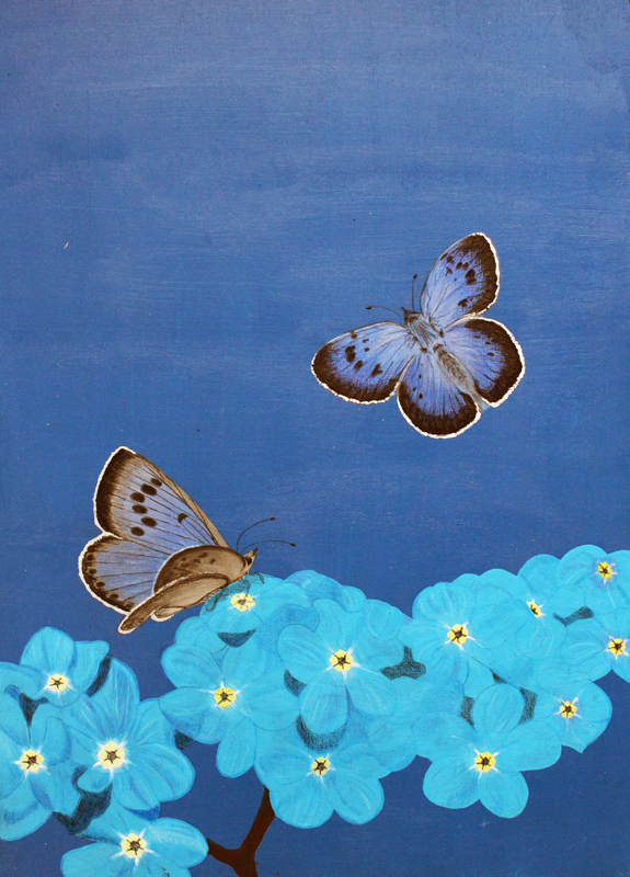 Butterfly blue small.jpg