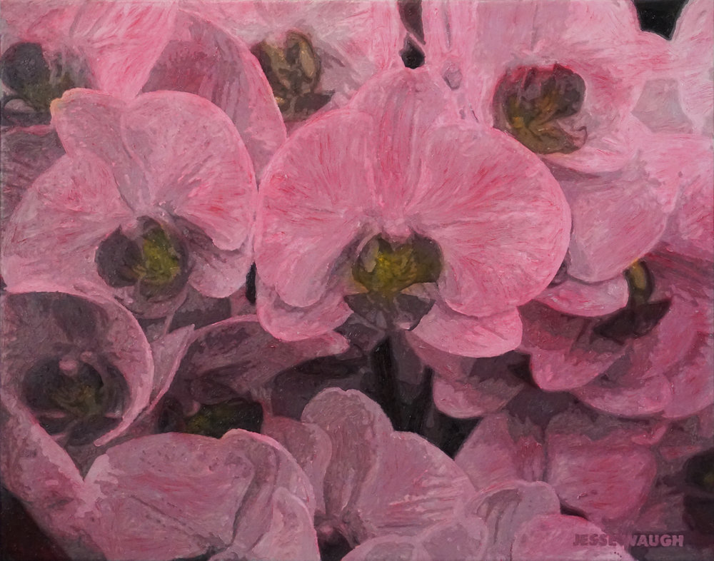 JESSE WAUGH   PINK ORCHIDS AT HAMPTON COURT FLOWER SHOW   2019-03-03 OIL ON CANVAS 92 X 73 CM (30F)