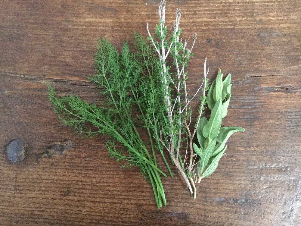 Wild dill, thyme and sage