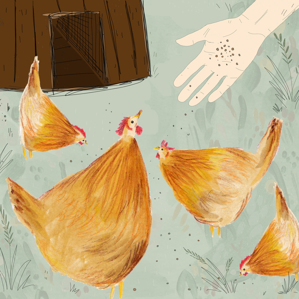 The Chicken people (detail)