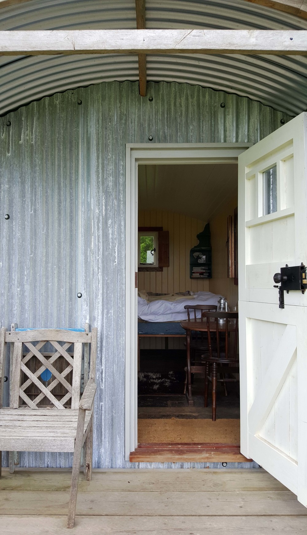 longhorn inside.jpg