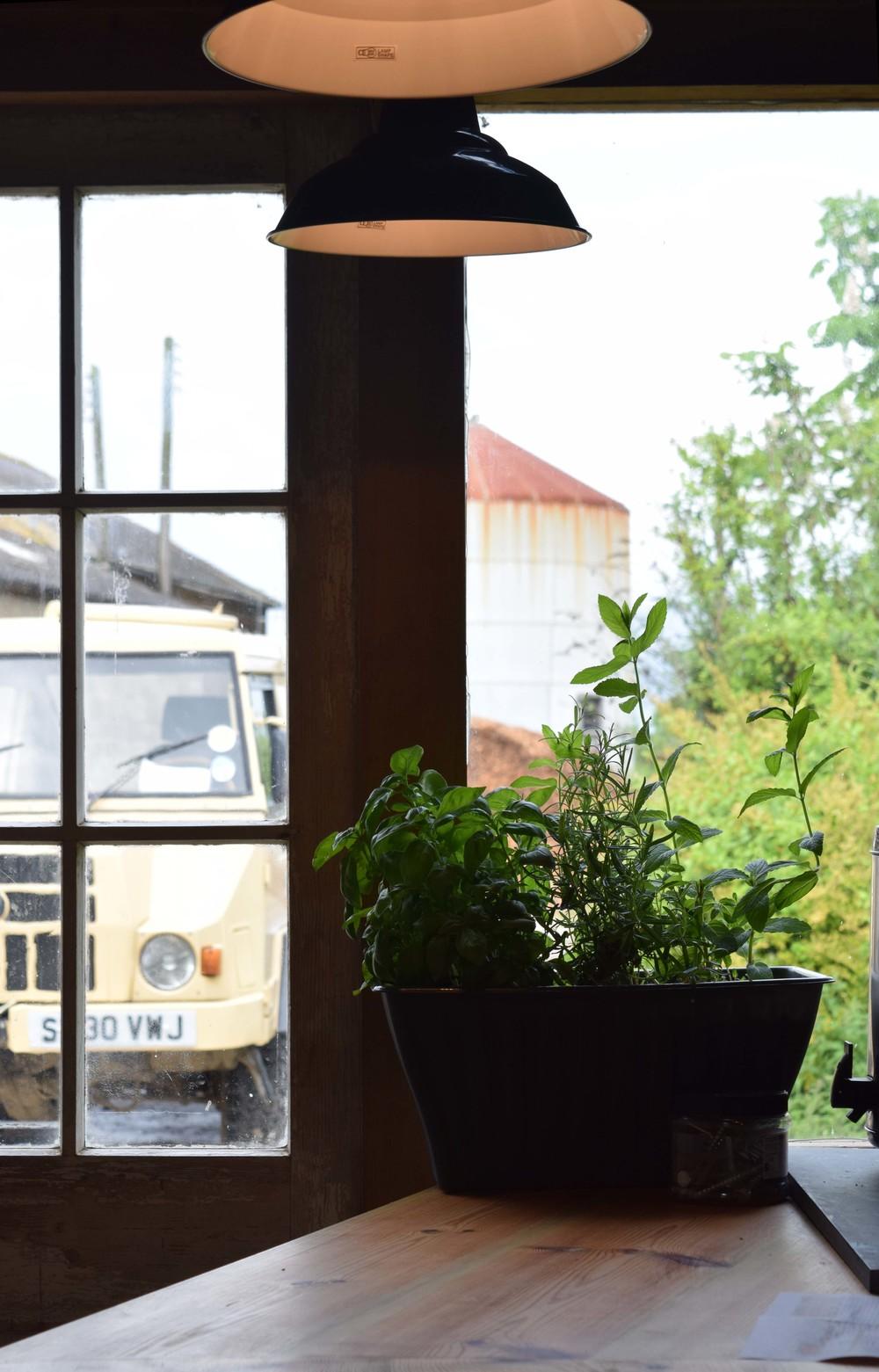 inside barn.jpg