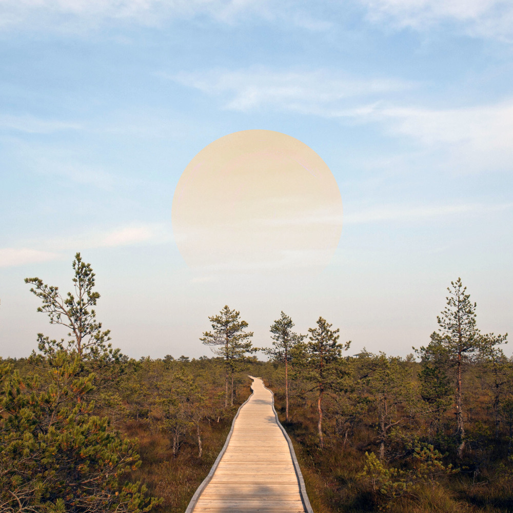 To the Sun. A mixed media edit of my own photo from my solo travels in Estonia.