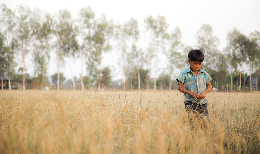 boy in field.jpg
