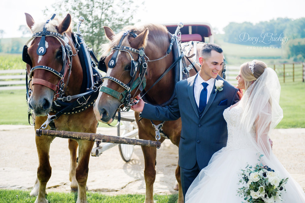 Dory_wedding_farm_country_equestrian_horses_bride_groom_apple_valley_04.jpg