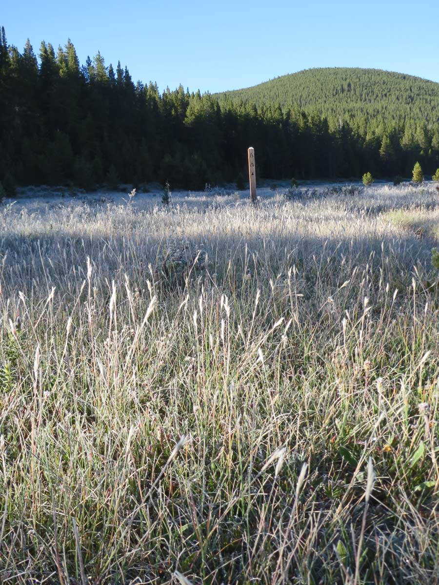 Cold nights, even in August. Frost on the plants, 7 am and hiking on. Day 3