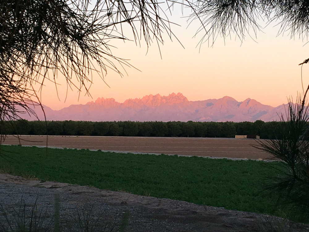 View of the Organ Mountains outside of Las Cruces, NM at sunset.
