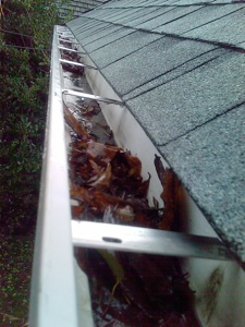 A gutter clogged by leaves.