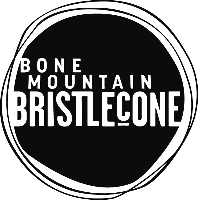 Bone Mountain Bristlecone