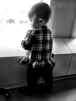 Mila in deep thought looking out the window at Discovery Communications. She loves watching things happening outside.