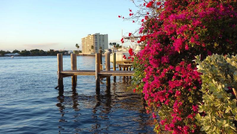 Florida 020.jpg