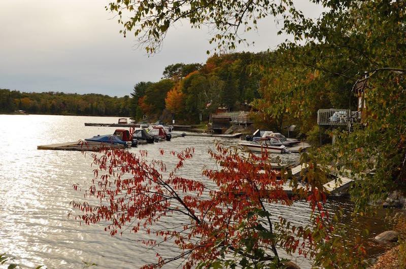 Lang Lake - 6.jpg