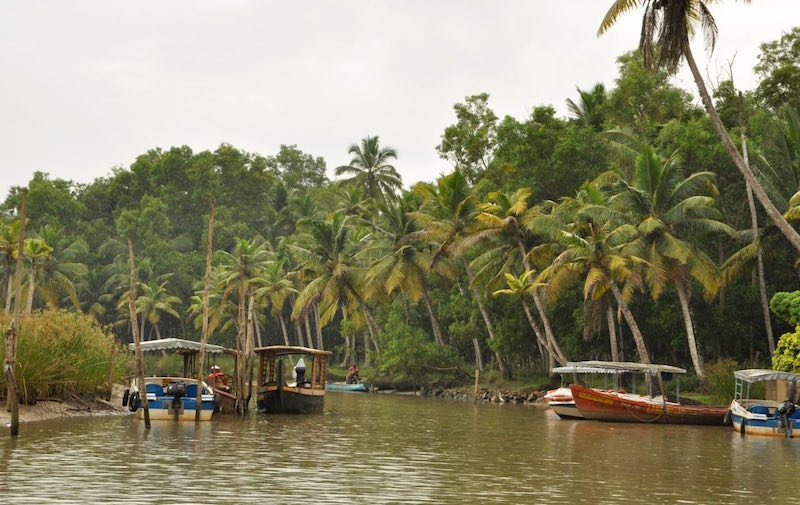 Trivandrum  - 95.jpg