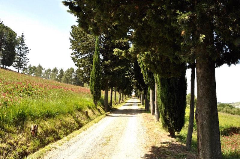 San Gimignano - 28.jpg