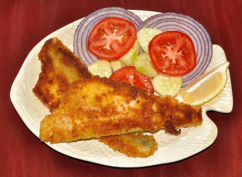 fish - 1.jpg