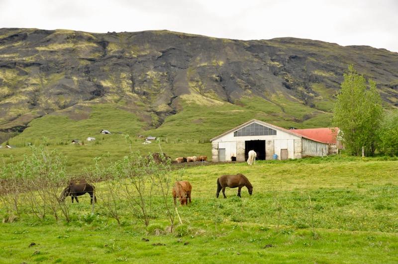 Iceland  - 67.jpg
