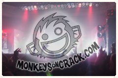 Monkeys On Crack