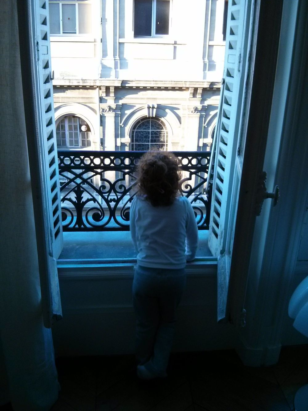 Lily Window.jpg