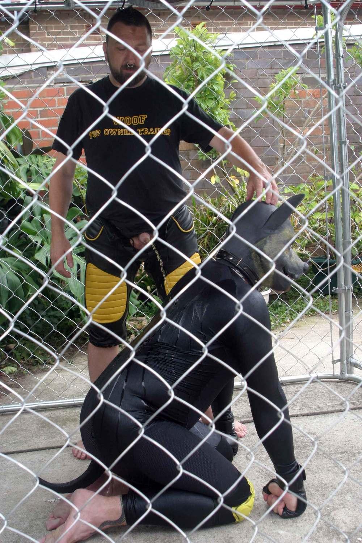 Pup-marking-2.jpg