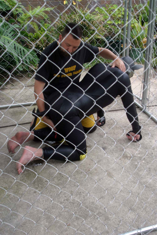 Pup-marking-11.jpg