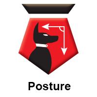 TitledFCT-Posture.jpg