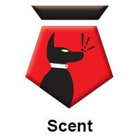 TitledFCT-Scent.jpg