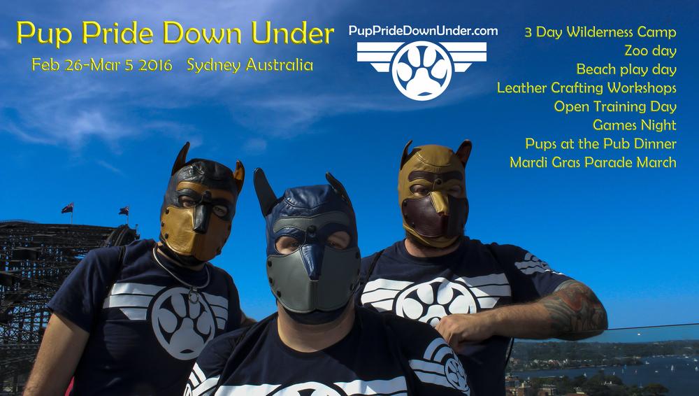PPDU Poster.jpg