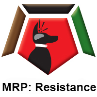 MRP Resistance.jpg