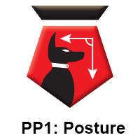 PP1 Posture.jpg