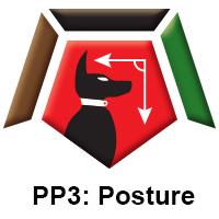 PP3 Posture.jpg