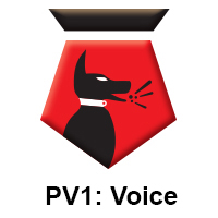 PV1 Voice.jpg