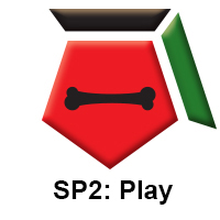 SP2 Play.jpg
