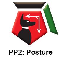 PP2 Posture.jpg