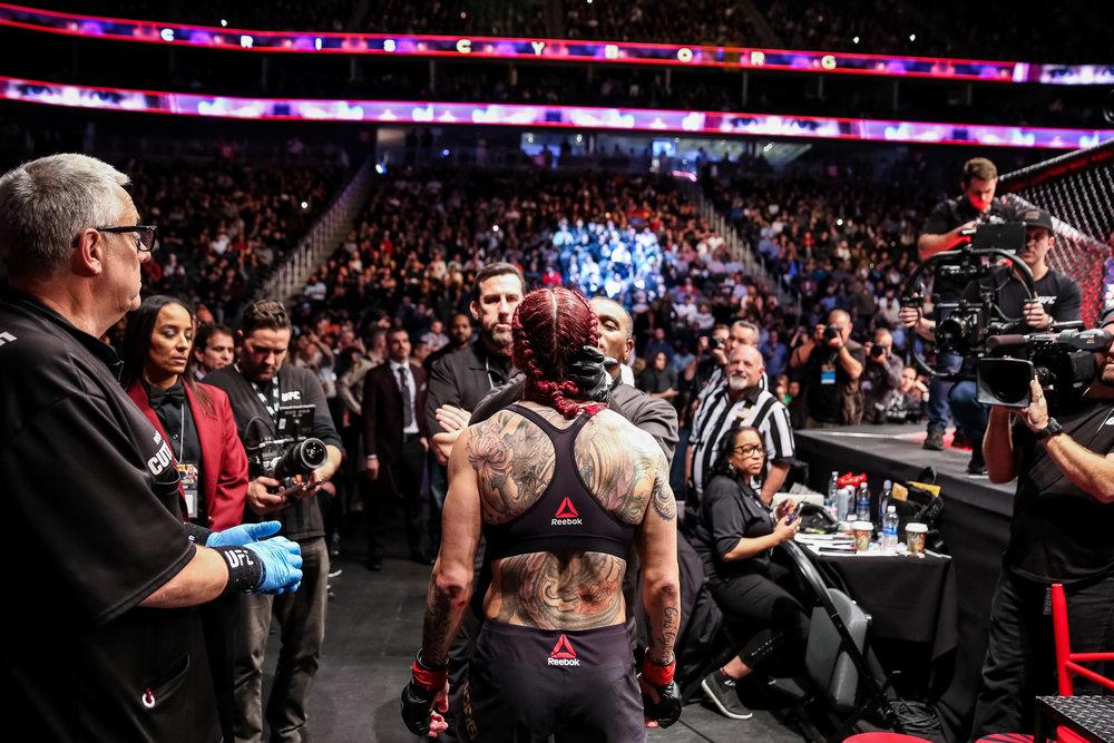 20171230_UFC219-151.jpg