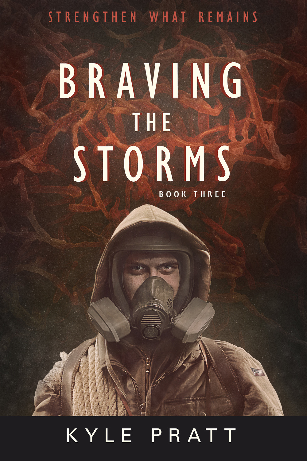 Front cover of Braving the Storms, by Kyle Pratt