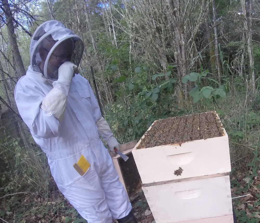 Kyle Pratt ready to harvest from one of his hives.