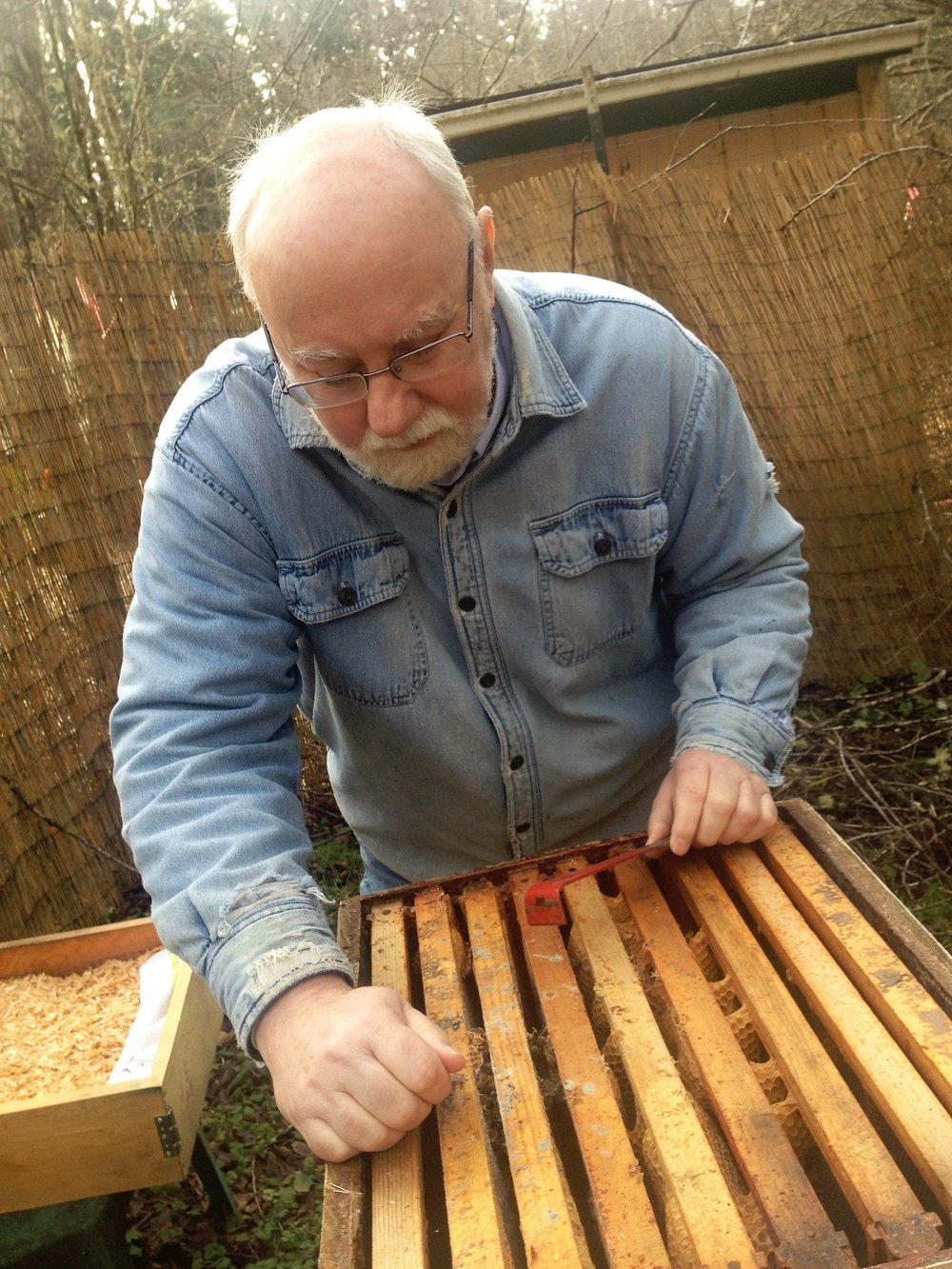 Author Kyle Pratt checks a hive