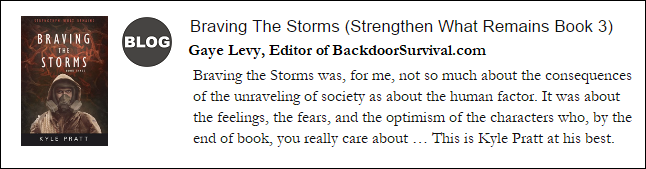 Braving the Storms Gaye Levy Blog.png