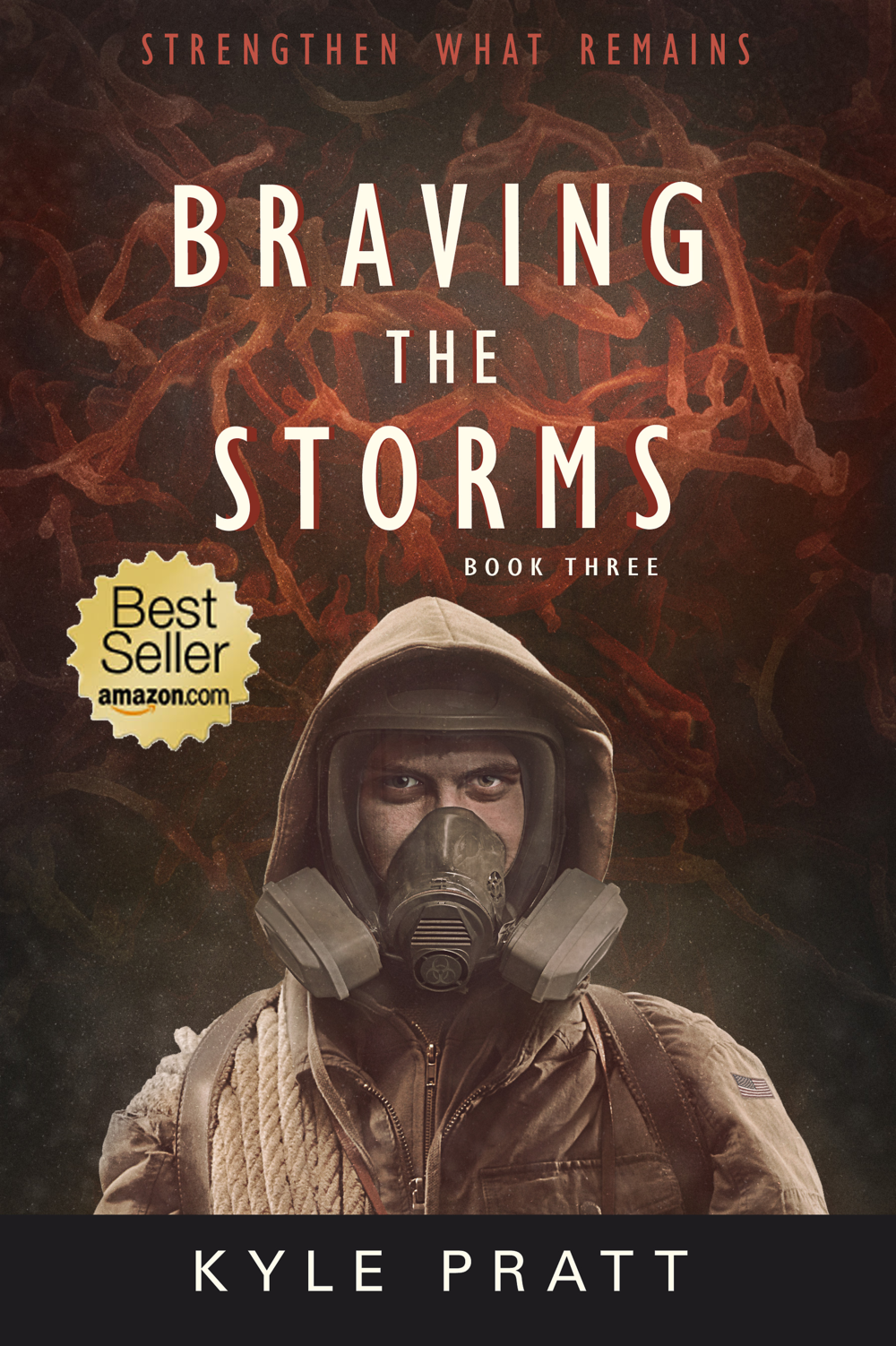 Braving the Storms    The third full-length novel in the Strengthen What Remains series.   A swift and deadly flu epidemic sweeps out of overcrowded FEMA camps and strikes the nation with horrific results. Caden Westmore struggles to keep his family and community safe, while others use the plague to advance their own military and political agendas. Caden must succeed, but how can he, when both the epidemic and chaos attack his hometown and family?