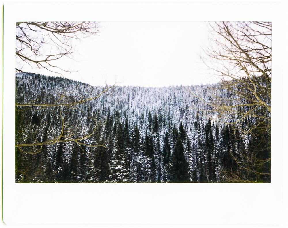 Telluride 3-2.jpg